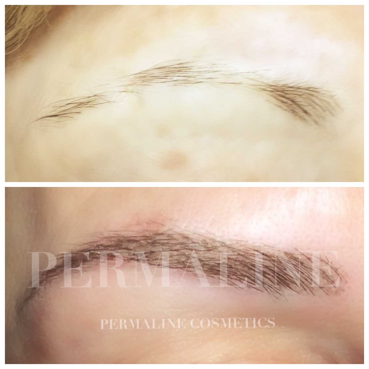 Processed With Moldiv Permanent Makeup Microblading Nyc Ny